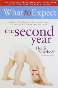 What To Expect : The Second Year (From 12 To 24 Month)