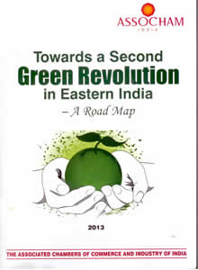 Towards a Second Green Revolution in Eastern India - A Road Map