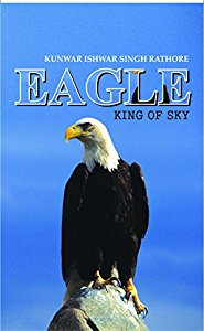 Eagle King of Sky